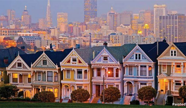 San Franciso Painted ladies