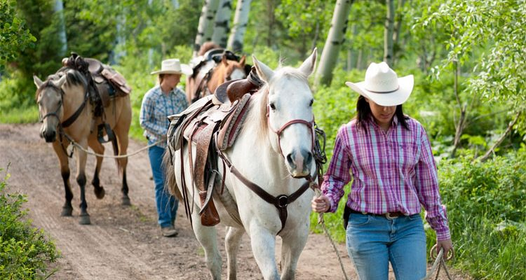 Montana Ranch Vacations